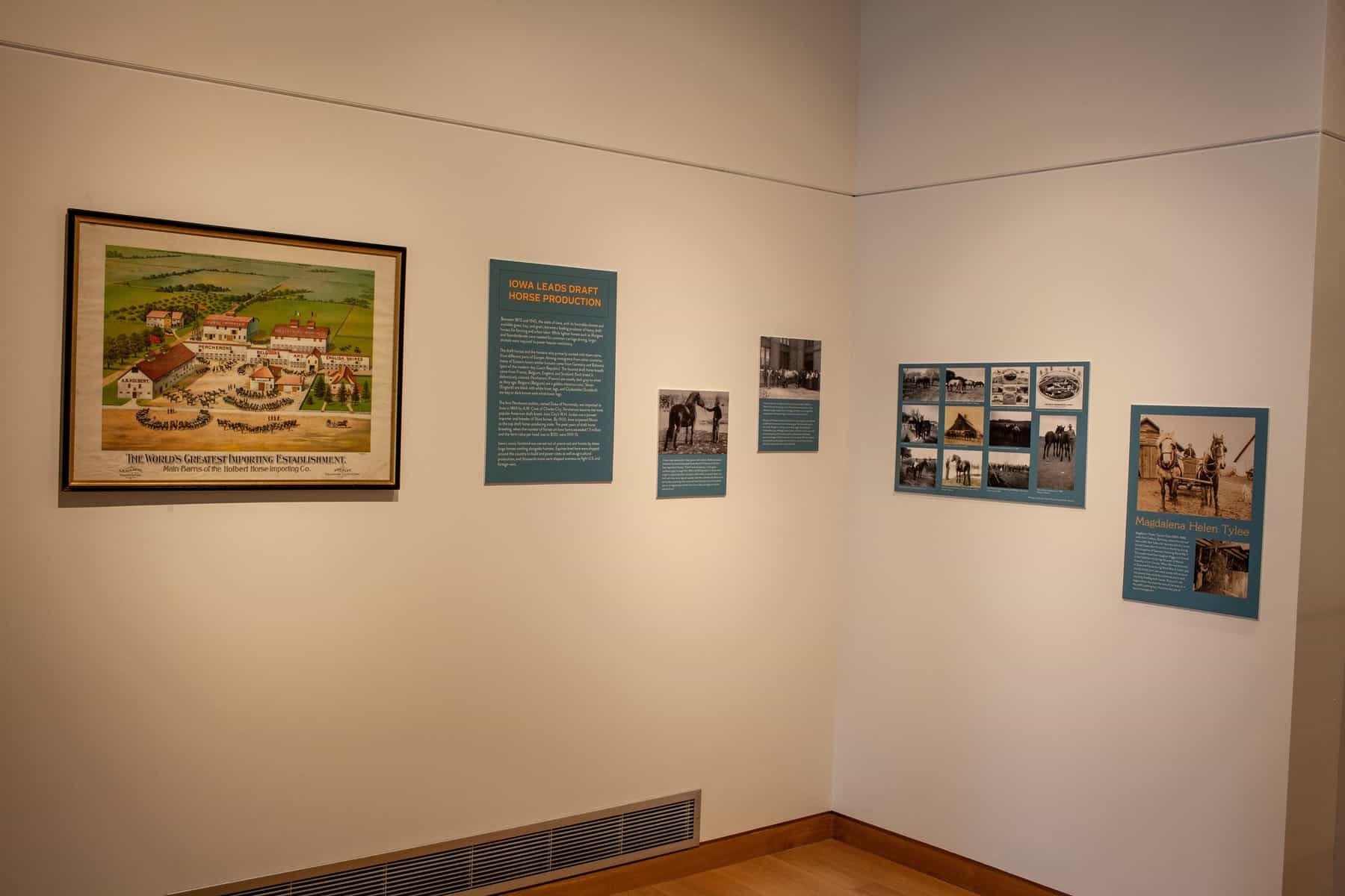 Several panels with images and text are mounted to the gallery wall. This section focuses on horse breeding in Iowa, and panel text and information about the photos is listed in the body of this page.