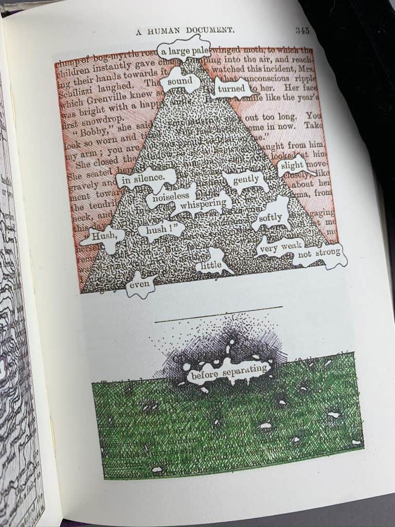 A page from this altered novel features colorful art surrounding select words from a page in this treated Victorian novel.