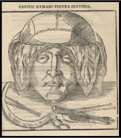 Johannes Dryander