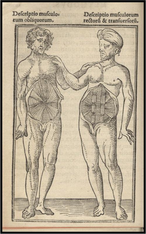 Anatomica Methodus