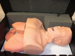 Intubation models AirSim Multi Advanced