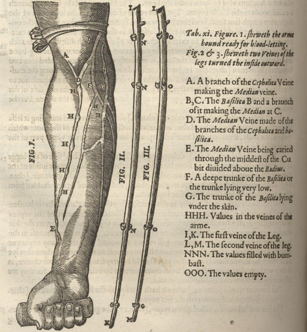 HELKIAH CROOKE (1576-1635)