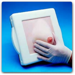 Examination & Diagnostic Breast Simulator