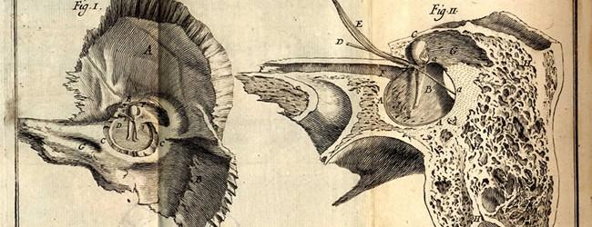 Du Verney, M., 1648-1730