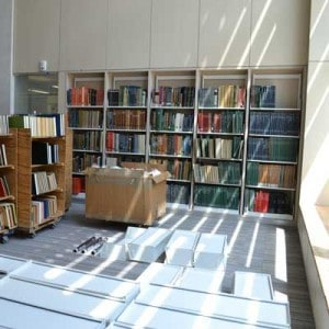 Sun dapples into a large, high ceiling room where shelves are being stocked with books.