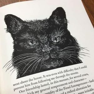 Drawing of Black Cat