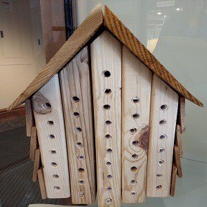 Image of wooden bee text