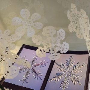 Picture of snowflakes