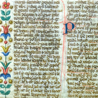<p>A site exhbiting digitized medieval manuscripts, transcriptions, translations, and critical materials generated by Spanish Paleography workshop attendees.</p>
