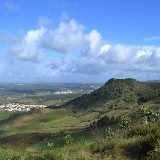 <p>Death and Life at Bolores and the Sizandro Valley, Portugal showcases the archaeological research carried out by Professor Katina Lillios, University of Iowa students, and collaborators at the third millennium BCE burial at Bolores (Torres Vedras, Portugal) and investigations in the Sizandro Valley.</p>